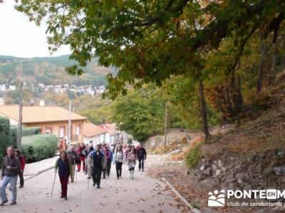 El Castañar de El Tiemblo, Casillas Ávila senderismo; excursiones con perros